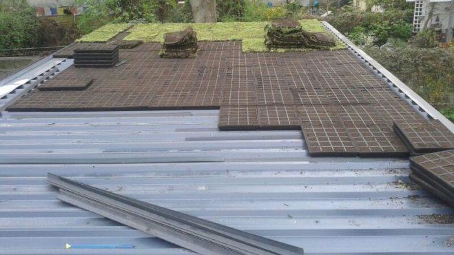 Extensive Dachbegrünung - Fix-und-Fertig-System - Verlegung